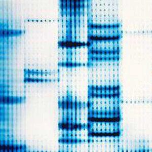 DNA-testing